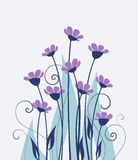 Vector wild flowers Royalty Free Stock Image