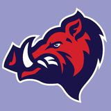 Wild Hog head Mascot Royalty Free Stock Photo