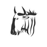 Vector of a wildebeest head on white background. Stock Image