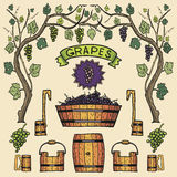Vector wine grapes illustrations Winemaking design. Royalty Free Stock Images