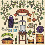 Vector wine infographics color illustrations Winemaking design. Stock Photos