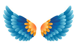 Vector wings. On white background Stock Photography