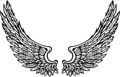 Vector Wings Eagle Graphic Image. Vector Illustration of Ornate Bird Wings Stock Image