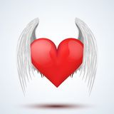 Vector wings and heart illustration Royalty Free Stock Image
