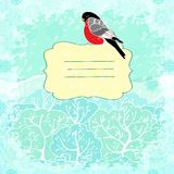Vector winter background with bullfinch bird Stock Photos