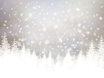 Vector winter  background. Royalty Free Stock Image