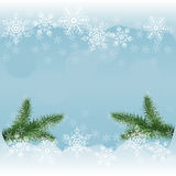 Vector winter background with snowflakes and pine branches Stock Photo