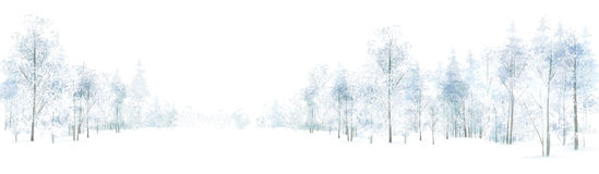 Vector winter  forest background. Stock Photos