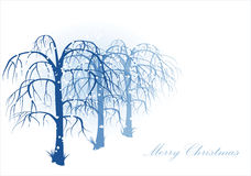 Vector winter landscape Stock Photos