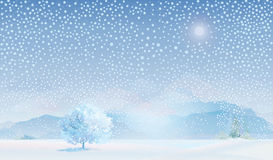 Vector of winter landscape. Stock Images