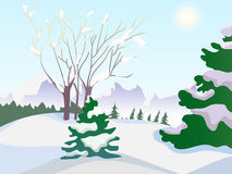 Vector winter landscape. Trees in the snow. Day landscape. Frost Stock Photo
