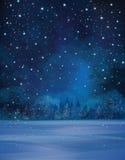 Vector winter night scene. Stock Photo