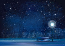 Vector winter night scene. vector illustration