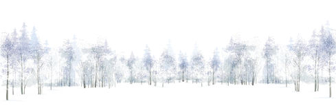Vector winter scene with forest background isolated on white. stock illustration