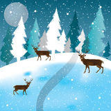 Vector of winter scene, white snow and blue sky. Royalty Free Stock Photos