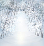 Vector winter snow landscape. Stock Photo