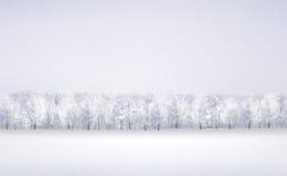 Vector winter snow landscape. Royalty Free Stock Photo