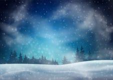 Winter Night Landscape vector illustration