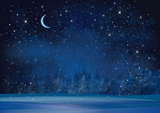 Vector winter wonderland night background. Stock Photography