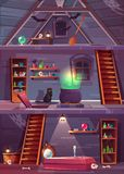 Vector witch house with cellar and attic. royalty free illustration