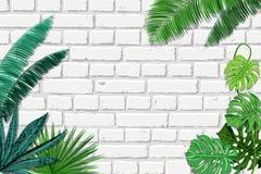 Vector witte bakstenen muur en groene tropische palmbladen De zomer of de lente in binnenlandse achtergrond met plaats voor tekst vector illustratie
