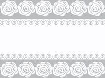 Vector Witte rozen op een grijze strook Stock Foto