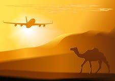 Vector woestijn, kameel, straal. Royalty-vrije Stock Afbeeldingen
