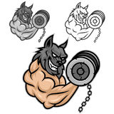 Wolf bodybuilder exercising with dumbbells Royalty Free Stock Photos