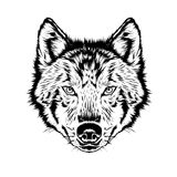 Vector wolf silhouette. Wolf silhouette. Vintage wolf face logo emblem template for business or t-shirt design. Vector wolf Vintage Design Element. Wolf logo Royalty Free Stock Image