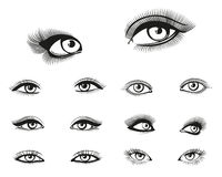 Vector woman eyes set Stock Image