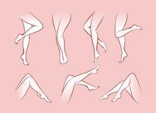 Vector woman legs Royalty Free Stock Photos