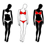vector woman silhouette in lingerie Royalty Free Stock Photo