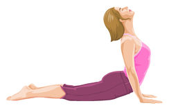 Vector of woman in yoga pose. Vector illustration of woman in yoga pose Stock Images