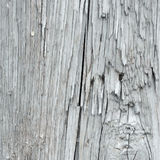 Vector wood texture Stock Photography