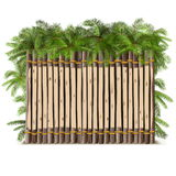Vector Wooden Fence with Palm Royalty Free Stock Photography