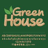 Vector Wooden Logo Green House Royalty Free Stock Photo