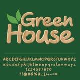 Vector wooden logo Green House Royalty Free Stock Photo