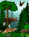 Vector woodland green forest trees backlit with animals. Illustration vector illustration