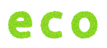 Vector word eco with leaves on a white Royalty Free Stock Images