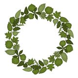 Vector wreath of leaves vector illustration