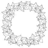Vector wreath with outline Ivy or Hedera foliage. Ornate leaf and Ivy vine in black isolated on white background. Stock Photo