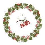Vector wreath of rowan leaves, flowers and berries royalty free illustration