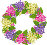 Vector wreath of twigs of lilac Royalty Free Stock Photos