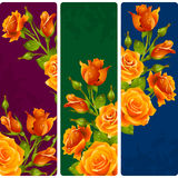 Vector yellow Rose frames. Set of floral vertical banners Stock Photos