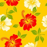 Vector yellow tropical summer hawaiian seamless pattern with tropical hibiscus flowers. Vector yellow and red tropical summer hawaiian seamless pattern with Stock Photography