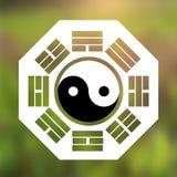 Vector Yin y Yang Symbol y ocho Trigrams en un fondo natural Foto de archivo libre de regalías