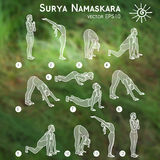 Vector yoga illustration. Surya Namaskara. Yoga set. Yoga exercises. Women yoga. Yoga class, yoga center, yoga studio. Yoga poster. Sketch with yoga asana Stock Photo