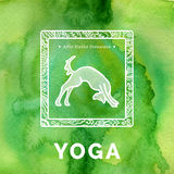 Vector yoga illustration. Yoga poster with yoga pose. Poster for yoga studio or yoga class on a green watercolors background. Yoga sticker with a dog. Yoga Royalty Free Stock Photo