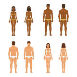 Vector young woman and guy in underwear. Body Royalty Free Stock Images