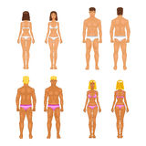 Vector young woman and guy in underwear. Body templates Stock Photo
